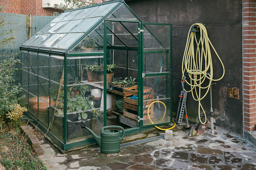 趣味・暮らし「Greenhouse with seedlings in a garden」:スマホ壁紙(6)