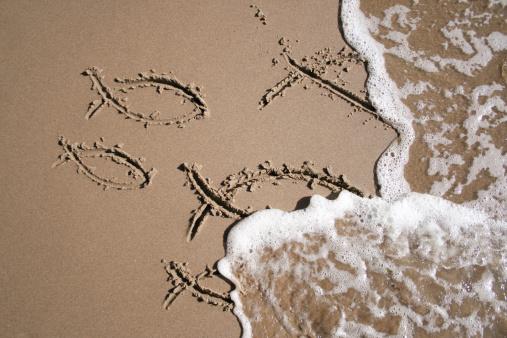 Cartoon「Sand Fish」:スマホ壁紙(15)