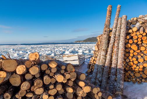 Sled「Firewood stored outdoors」:スマホ壁紙(11)
