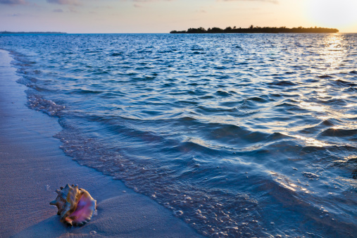 ケイマン諸島「夜明け Owen 島、ケイマン諸島」:スマホ壁紙(12)