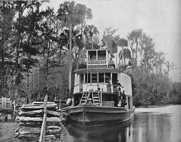 Land「On The Ocklawaha River」:写真・画像(14)[壁紙.com]