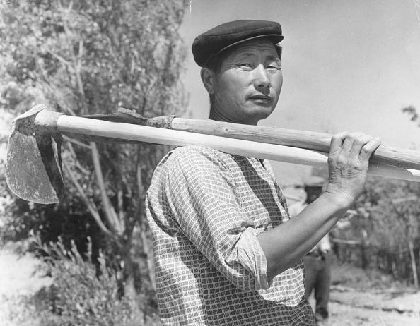 Uzbekistan「Asian Farmer」:写真・画像(15)[壁紙.com]