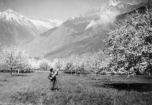 Spraying「Orchard Spraying」:写真・画像(12)[壁紙.com]