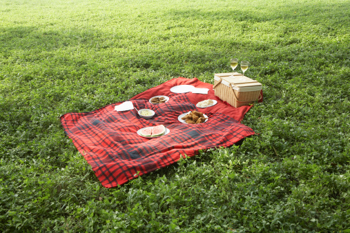 Picnic Blanket「Food on picnic blanket」:スマホ壁紙(18)