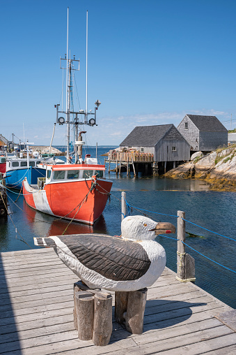 Herring Gull「Canada, Nova Scotia, Peggys Cove, Wooden sculpture of herring gull in harbor」:スマホ壁紙(3)