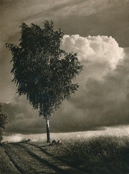 Overcast「Masuren - Brewing thunderstorm, 1931」:写真・画像(13)[壁紙.com]