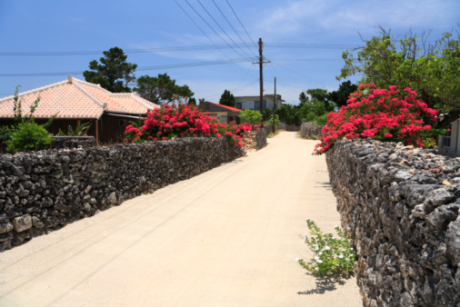 Okinawa Prefecture「Stone Wall Alley, Taketomi, Okinawa, Japan」:スマホ壁紙(18)
