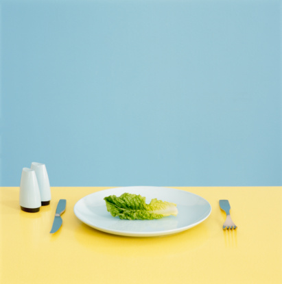 Silverware「Lettuce leaf on plate with utensils and salt and pepper shakers」:スマホ壁紙(14)