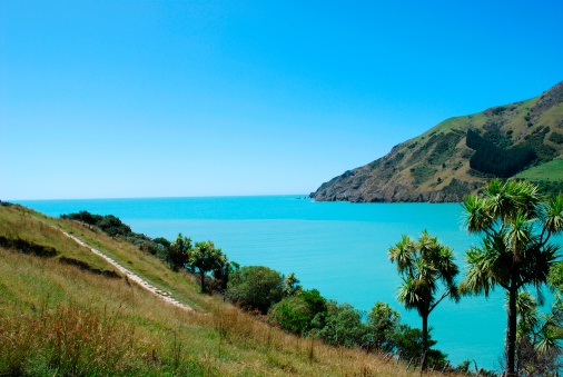 New Zealand「Seascape, Cable Bay, Nelson, New Zealand」:スマホ壁紙(13)