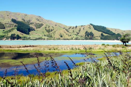 New Zealand Culture「Seascape, Cable Bay, Nelson, New Zealand」:スマホ壁紙(11)