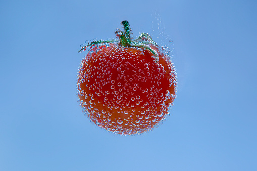 Tomato「Tomato in mineral water」:スマホ壁紙(13)