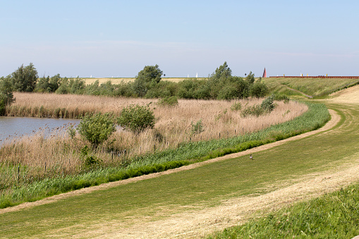 Horizontal「Dike along Dutch top nature reserve Oostvaardersplassen」:スマホ壁紙(14)