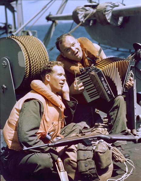Accordion - Instrument「Singing On A Ship」:写真・画像(15)[壁紙.com]