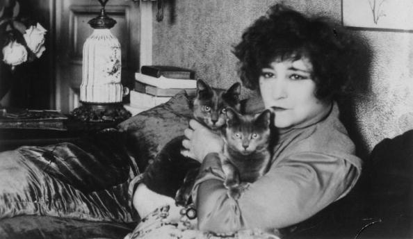 French Culture「Colette And Cats」:写真・画像(5)[壁紙.com]