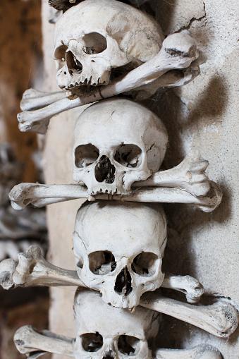 ドクロ「skulls and bones in catacomb of Prague」:スマホ壁紙(15)