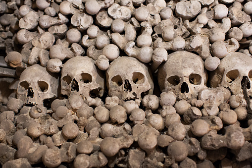ドクロ「skulls and bones in catacomb of Prague」:スマホ壁紙(14)