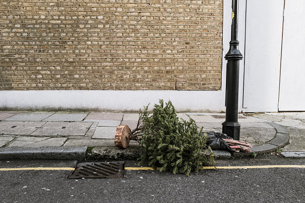 Obsolete「Lonely Christmas Trees 2017」:写真・画像(11)[壁紙.com]