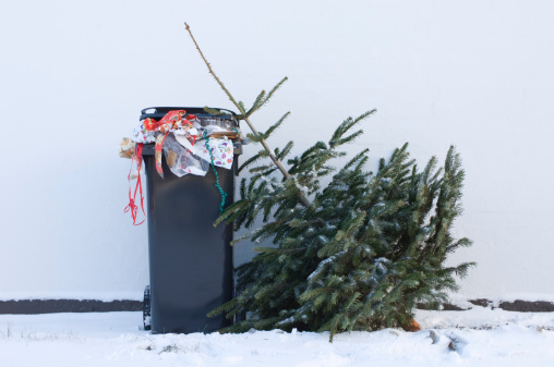 Sadness「Discarded Christmas Tree Waiting To Be Collected」:スマホ壁紙(11)