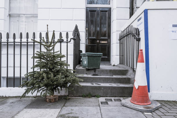 Lonely Christmas Trees 2017:ニュース(壁紙.com)