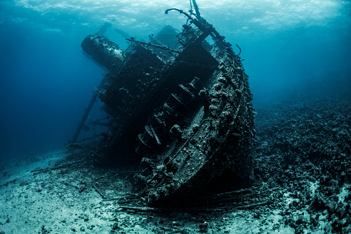 Deterioration「Shipwreck lying at the bottom of the Red Sea completely covered by seaweed and corals」:スマホ壁紙(12)