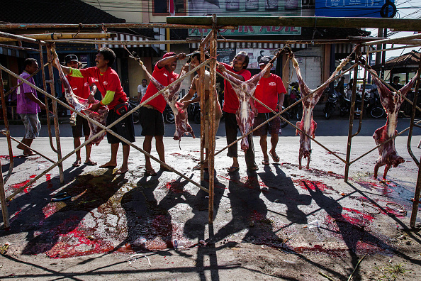 Butcher's Shop「Indonesians Mark Eid al-Adha On Lombok Island」:写真・画像(14)[壁紙.com]