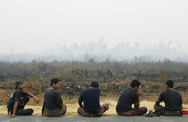 Haze From Wildfires Blanket Indonesian Skies:ニュース(壁紙.com)