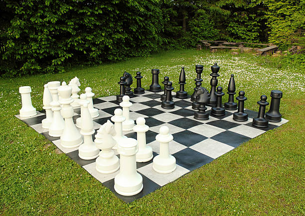 big outdoor chess in green lawn in sunny day:スマホ壁紙(壁紙.com)