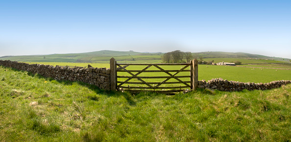 Peak District National Park「Fish-eye view of an ancient stone farm fence with wide field」:スマホ壁紙(15)
