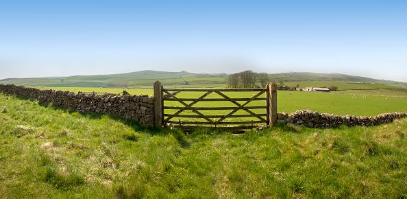 Derbyshire「Fish-eye view of an ancient stone farm fence with wide field」:スマホ壁紙(15)