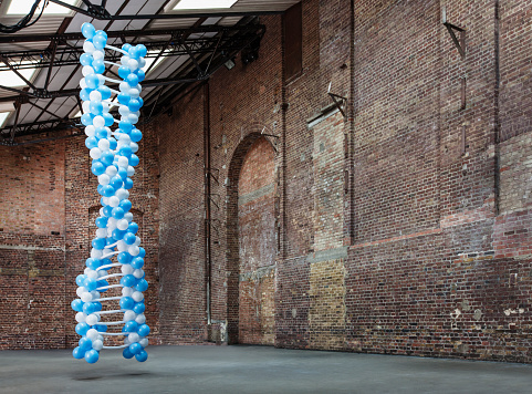 Individuality「DNA molecule made of balloons in empty warehouse」:スマホ壁紙(3)