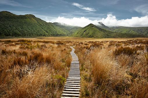 New Zealand「Empty hiking path in open landscape」:スマホ壁紙(17)