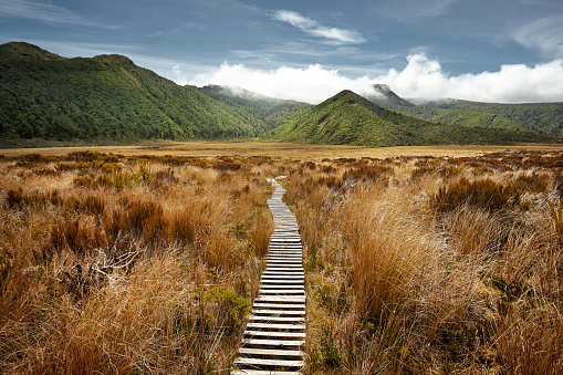 Wilderness「Empty hiking path in open landscape」:スマホ壁紙(17)