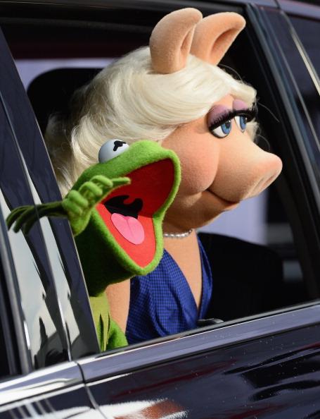 """El Capitan Theatre「Premiere Of Disney's """"Muppets Most Wanted"""" - Arrivals」:写真・画像(10)[壁紙.com]"""