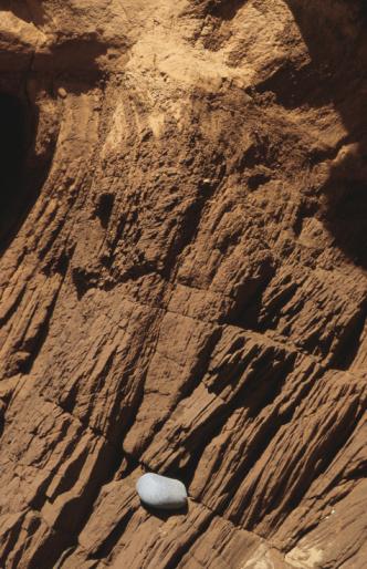 Steep「Pebble in crack of rocky wall」:スマホ壁紙(18)