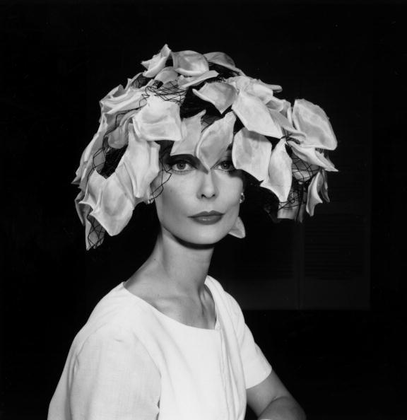 Petal「Petal Hat」:写真・画像(11)[壁紙.com]