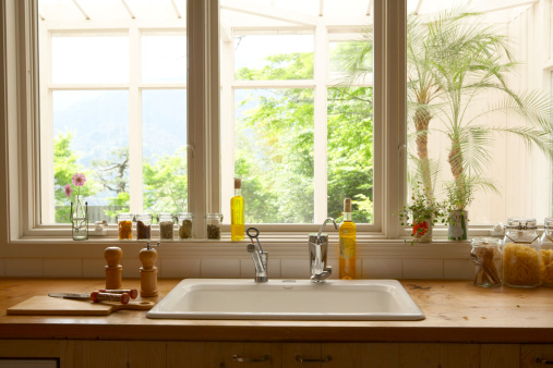 Plant「Cooking tools beside sink in kitchen」:スマホ壁紙(18)