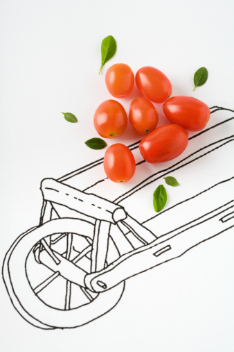Ripe「Roma tomatoes and basil leaves on drawing of cart」:スマホ壁紙(2)