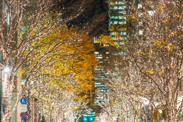 Illuminated rows of trees stand along Marunouchi Naka-Dori Street for Christmas season, which street is surrounded by many shops and boutiques in high-rise Office Buildings at Marunouchi Chiyoda Tokyo Japan on December 12 2017.:スマホ壁紙(壁紙.com)