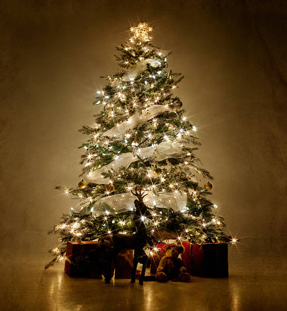 Illuminated Christmas tree at night:スマホ壁紙(壁紙.com)