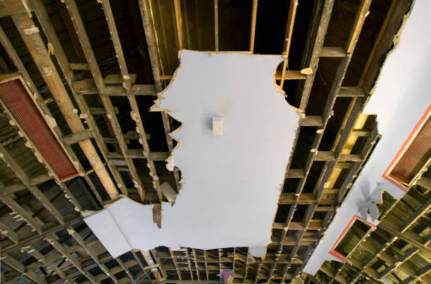 Ceiling being demolished with plasterboard sheets and rafters:ニュース(壁紙.com)