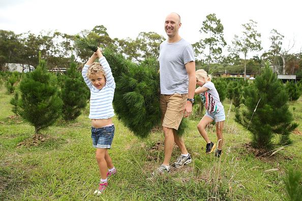 Brendon Thorne「Sydneysiders Head To Sydney Christmas Tree Farm」:写真・画像(4)[壁紙.com]