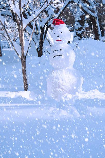 USA, New York, New York City, snowman in snowflakes:スマホ壁紙(壁紙.com)
