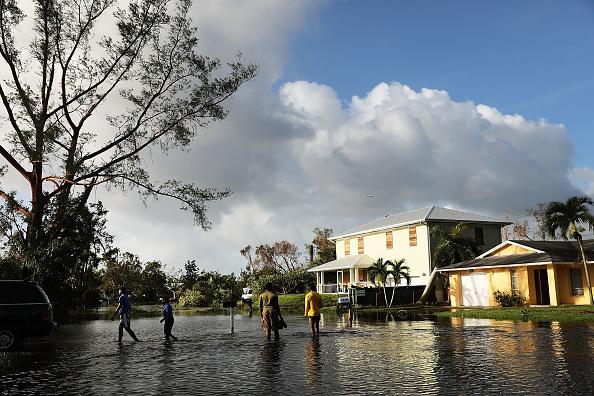 Naples - Florida「Powerful Hurricane Irma Slams Into Florida」:写真・画像(15)[壁紙.com]