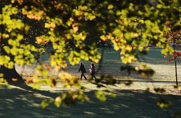秋「Autumn Colours Throughout The UK」:写真・画像(15)[壁紙.com]