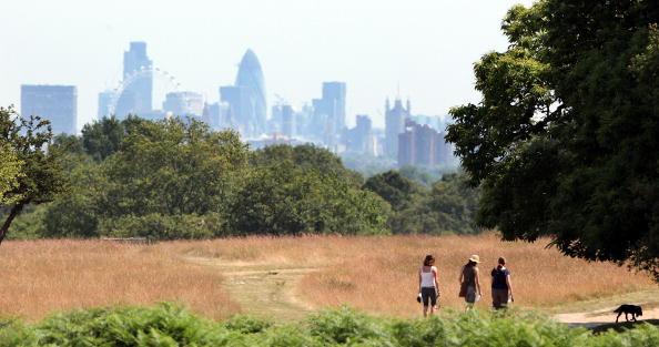Heat - Temperature「The UK Swelters Under Summer Sunshine」:写真・画像(14)[壁紙.com]