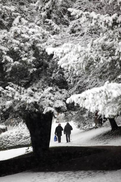 Snow Hits The UK:ニュース(壁紙.com)