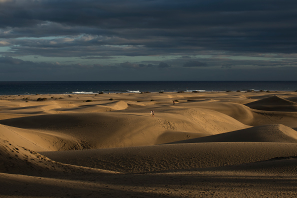 Environmental Issues「Coastal Dunes Recover On Gran Canaria As Pandemic Limits Tourism」:写真・画像(12)[壁紙.com]