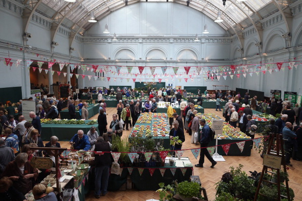 Agricultural Activity「Growers And Enthusiasts Enjoy The RHS London Harvest Festival Show」:写真・画像(7)[壁紙.com]
