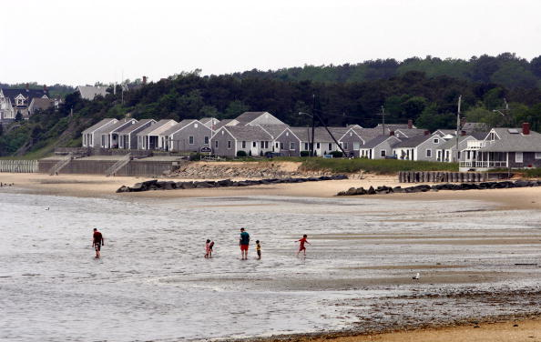 Mollusk「Red Tide Puts Strain On Clam Industry In Cape Cod」:写真・画像(9)[壁紙.com]
