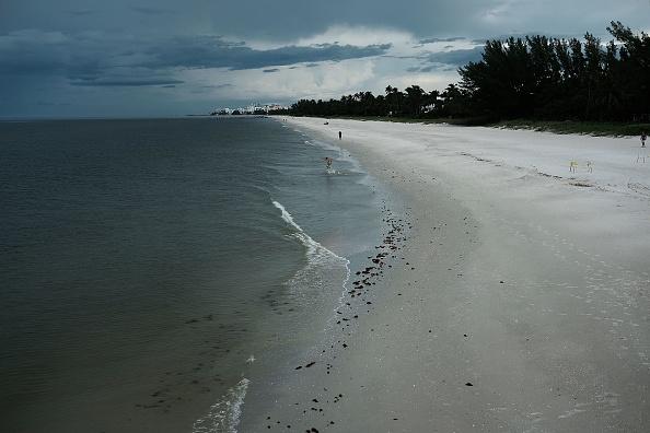Naples - Florida「Red Tide Algae Blooms Continue On Florida's Gulf Beaches」:写真・画像(19)[壁紙.com]